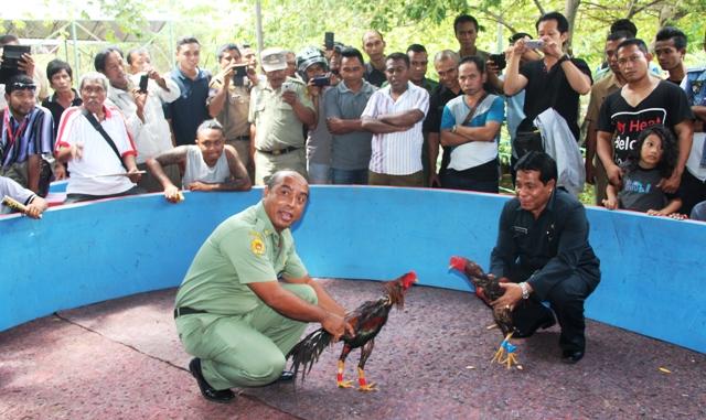 sbobet agent indonesia